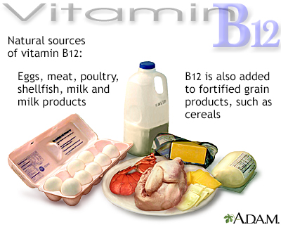 Vitamin B12 source